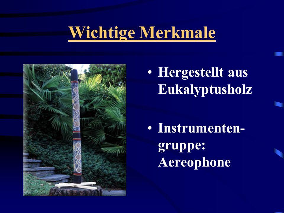 Wichtige Merkmale Hergestellt aus Eukalyptusholz Instrumenten- gruppe: Aereophone