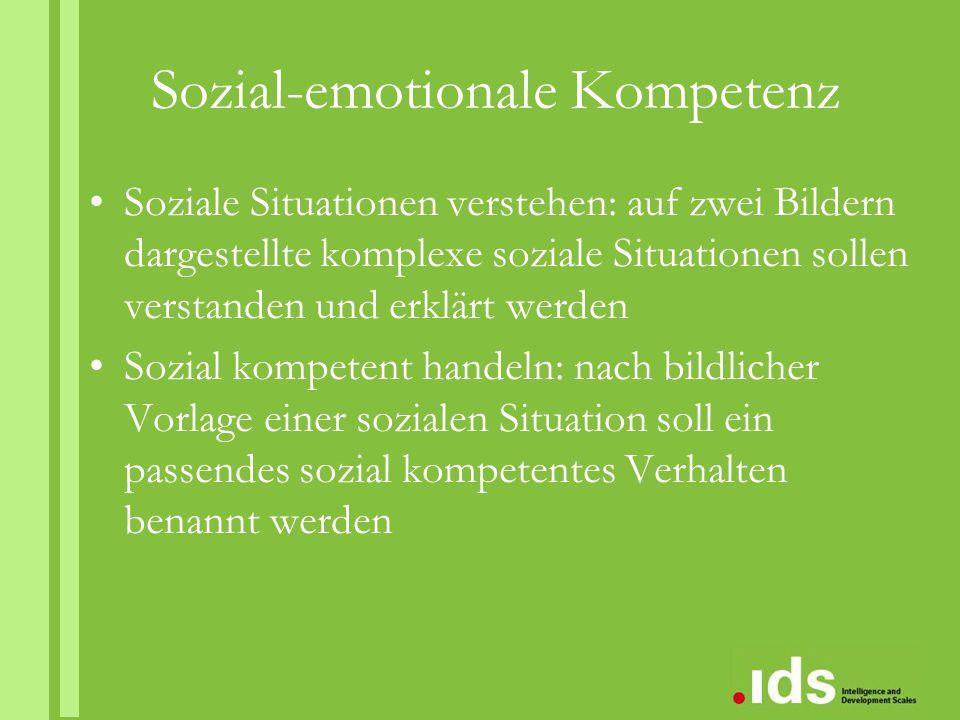 Sozial-emotionale Kompetenz Soziale Situationen verstehen: auf zwei Bildern dargestellte komplexe soziale Situationen sollen verstanden und erklärt we