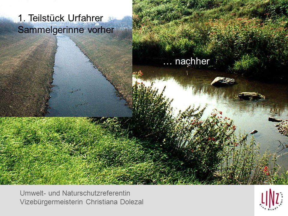 Umwelt- und Naturschutzreferentin Vizebürgermeisterin Christiana Dolezal Eisvogel 1.