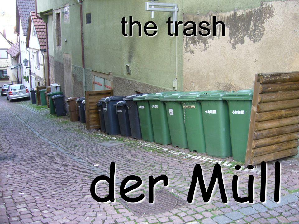 the trash der Müll