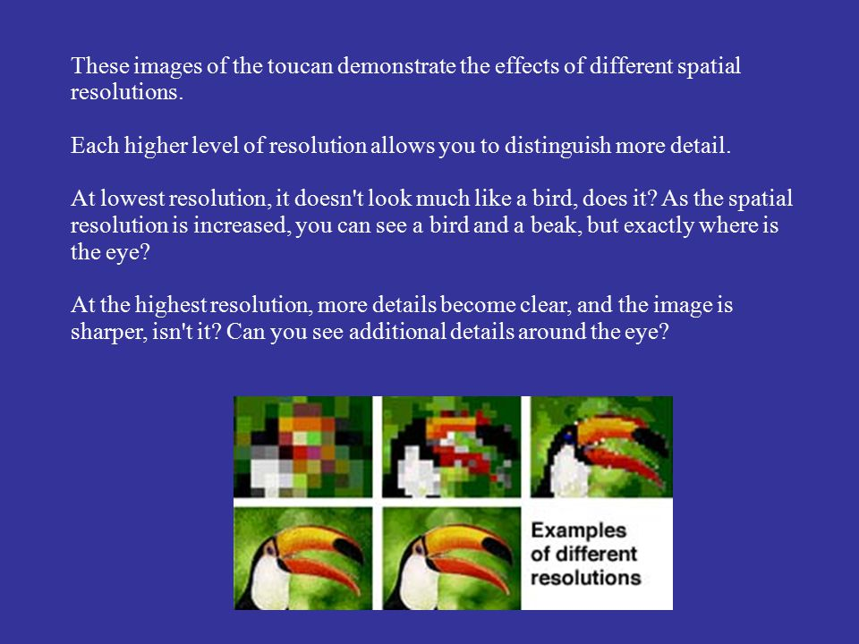 These images of the toucan demonstrate the effects of different spatial resolutions. Each higher level of resolution allows you to distinguish more de