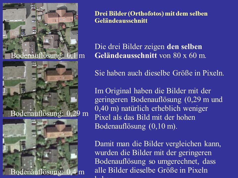 Drei Bilder (Orthofotos) mit dem selben Geländeausschnitt Die drei Bilder zeigen den selben Geländeausschnitt von 80 x 60 m. Sie haben auch dieselbe G