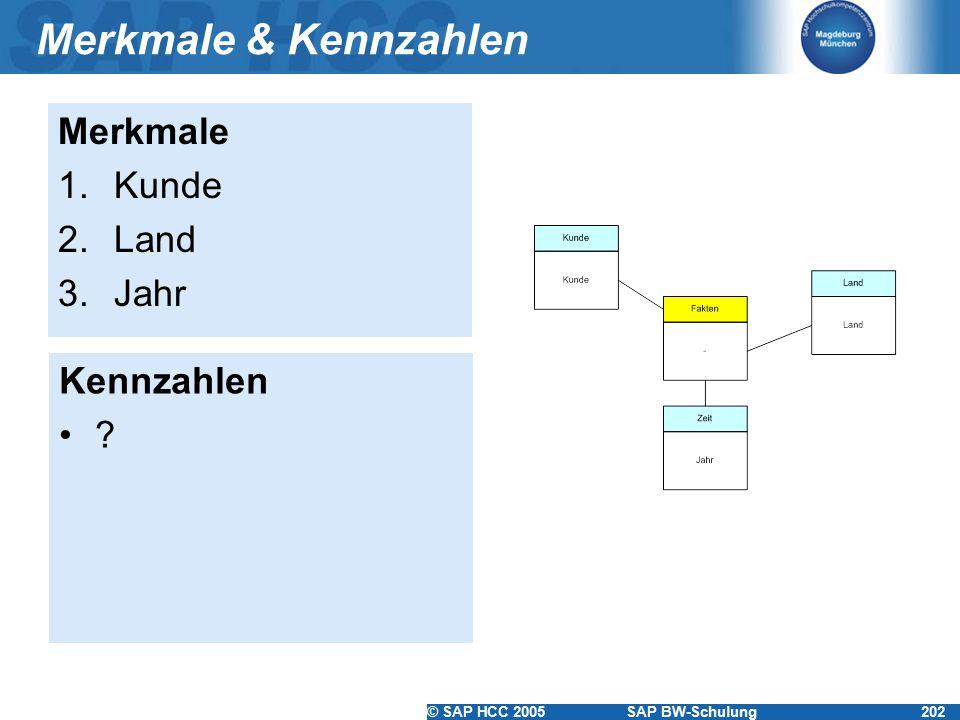 © SAP HCC 2005SAP BW-Schulung202 Merkmale & Kennzahlen Merkmale 1.Kunde 2.Land 3.Jahr Kennzahlen ?
