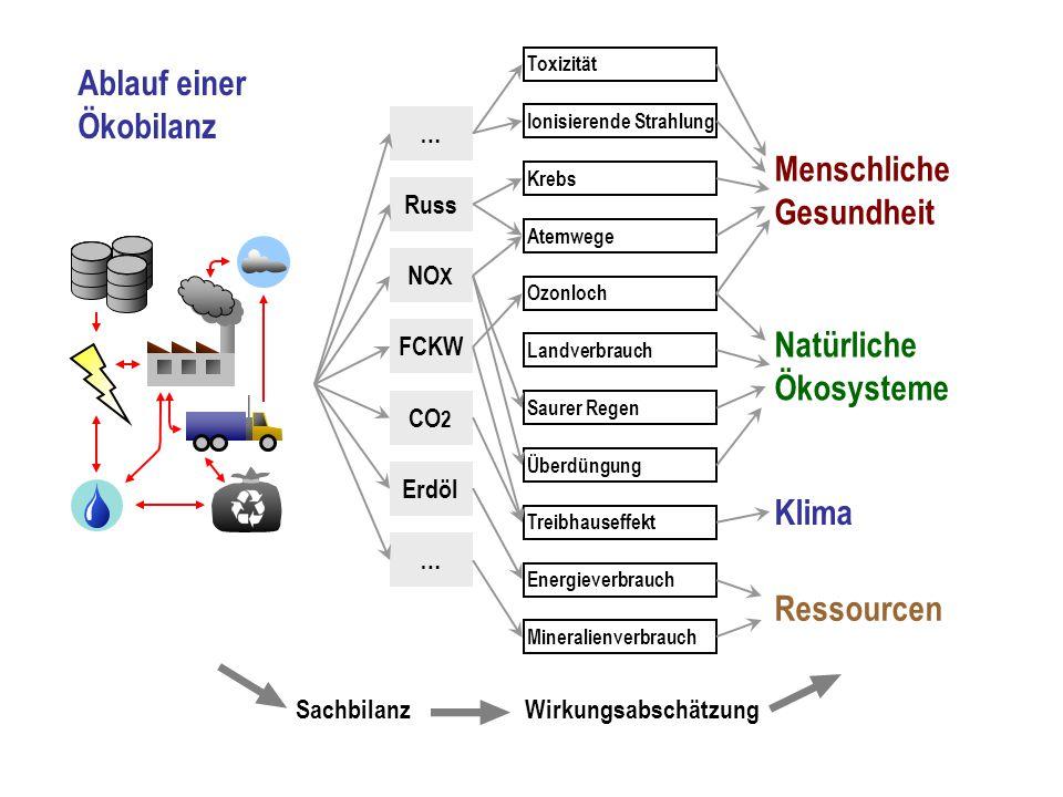 CO 2 NO X FCKW Russ Erdöl … … Atemwege Krebs Ozonloch Ionisierende Strahlung Energieverbrauch Toxizität Landverbrauch Saurer Regen Überdüngung Treibha