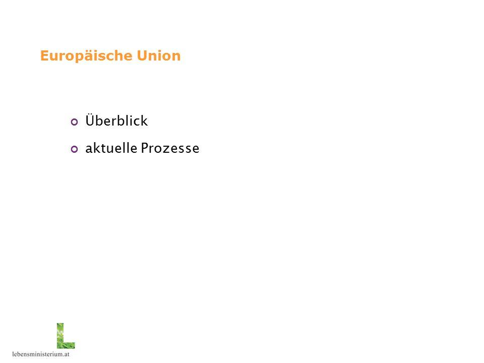 Europäische Union - Überblick Organe der EG: Europäische Kommission: politisch unabhängiges Organ, verfolgt gemeinsames europäisches Interesse Europäisches Parlament: Vertretung der Bürger Rat der Europäischen Union (Ministerrat): Vertretung der Mitgliedstaaten