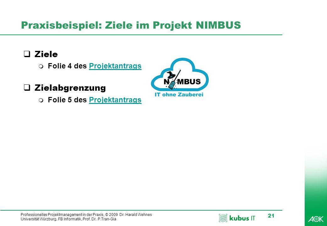 Professionelles Projektmanagement in der Praxis, © 2009 Dr. Harald Wehnes Universität Würzburg, FB Informatik, Prof. Dr. P.Tran-Gia 21 Praxisbeispiel: