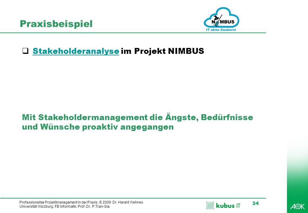 Professionelles Projektmanagement in der Praxis, © 2009 Dr. Harald Wehnes Universität Würzburg, FB Informatik, Prof. Dr. P.Tran-Gia 34 Praxisbeispiel