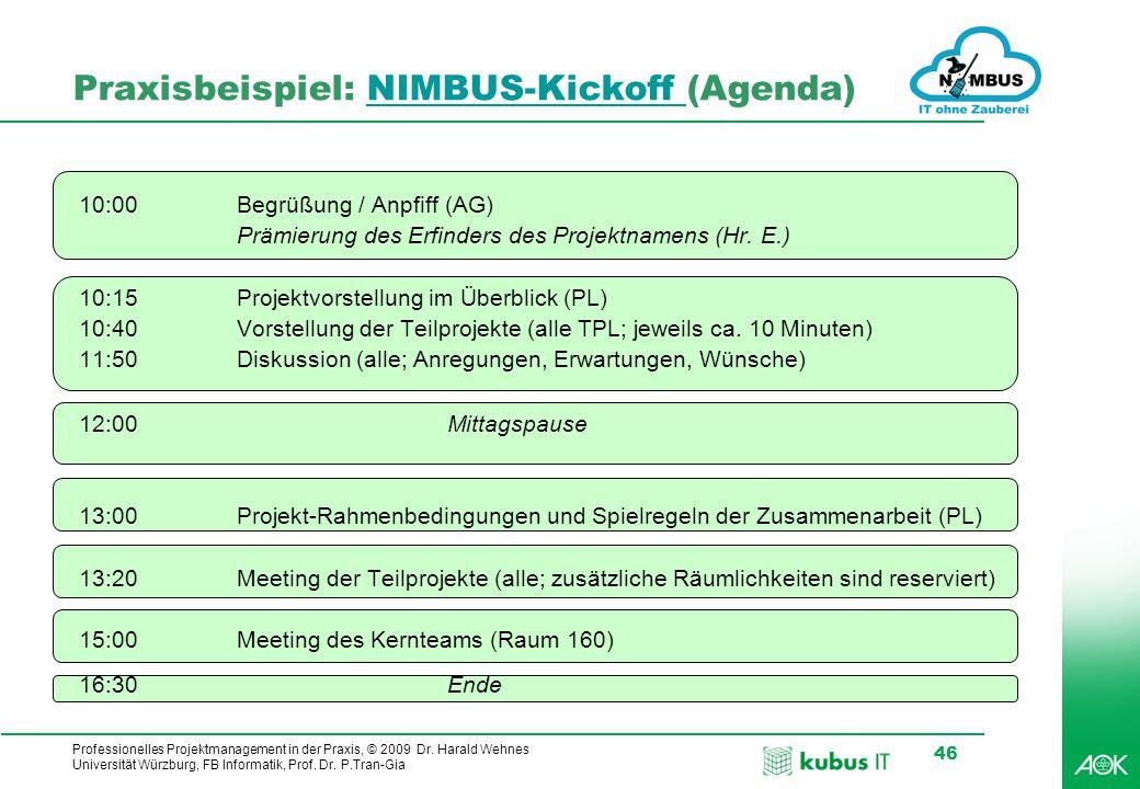 Professionelles Projektmanagement in der Praxis, © 2009 Dr. Harald Wehnes Universität Würzburg, FB Informatik, Prof. Dr. P.Tran-Gia 46 Praxisbeispiel: