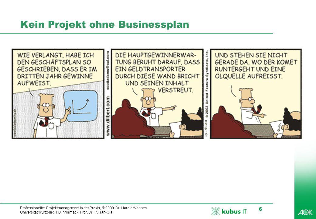 Professionelles Projektmanagement in der Praxis, © 2009 Dr.