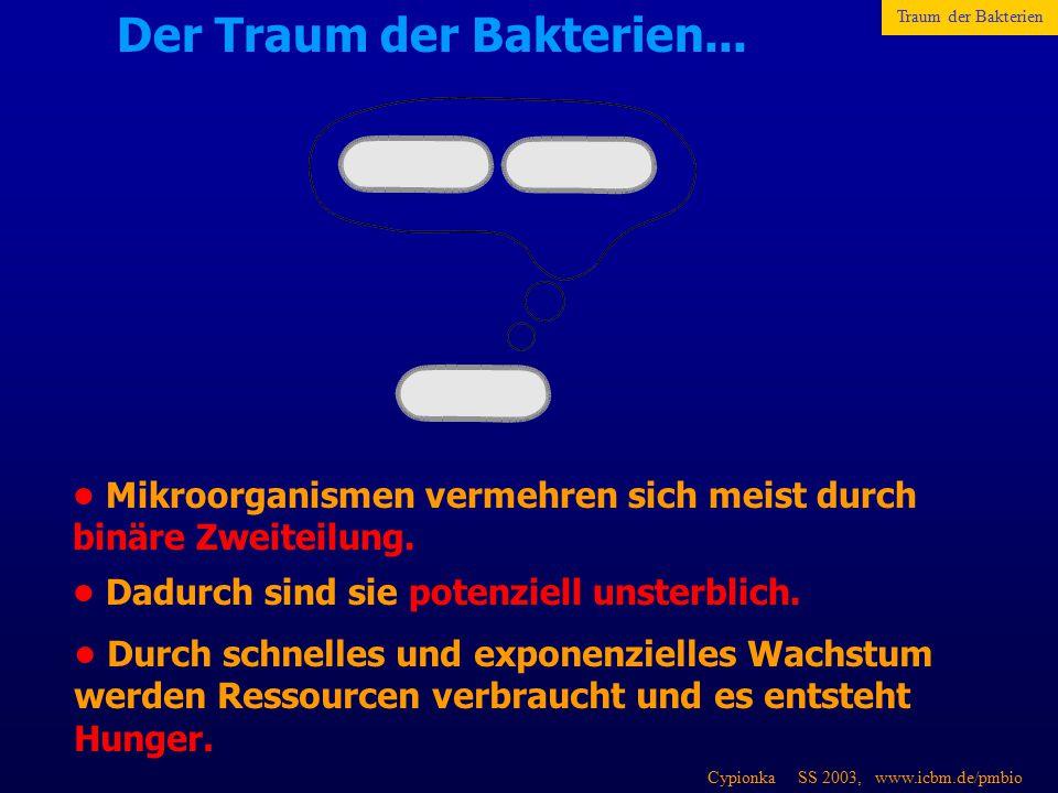 Cypionka SS 2003, www.icbm.de/pmbio Der Traum der Bakterien... Mikroorganismen vermehren sich meist durch binäre Zweiteilung. Dadurch sind sie potenzi