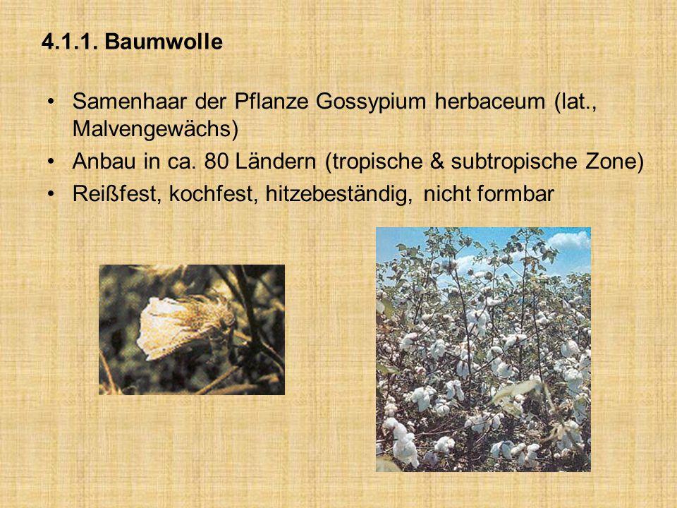 4.1.1. Baumwolle Samenhaar der Pflanze Gossypium herbaceum (lat., Malvengewächs) Anbau in ca. 80 Ländern (tropische & subtropische Zone) Reißfest, koc