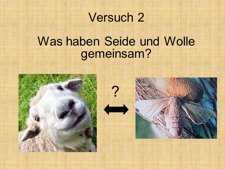 Versuch 2 Was haben Seide und Wolle gemeinsam? ?