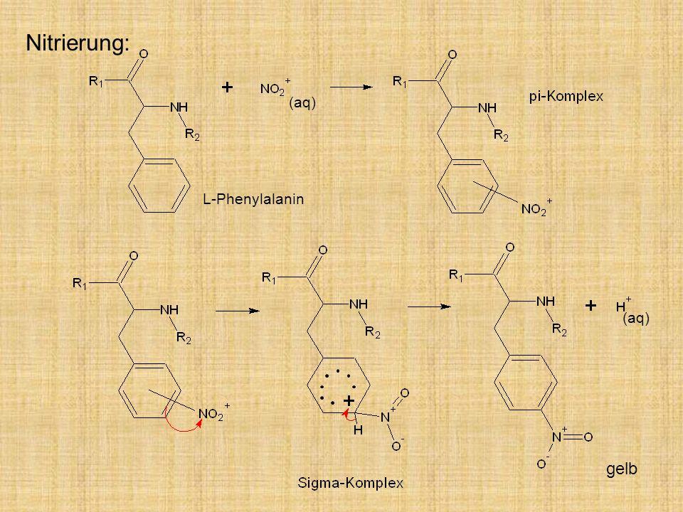 Nitrierung: gelb (aq) L-Phenylalanin