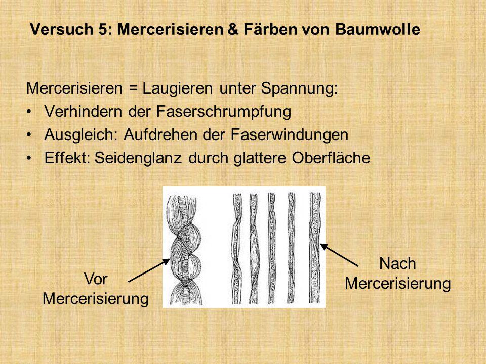 Versuch 5: Mercerisieren & Färben von Baumwolle Mercerisieren = Laugieren unter Spannung: Verhindern der Faserschrumpfung Ausgleich: Aufdrehen der Fas