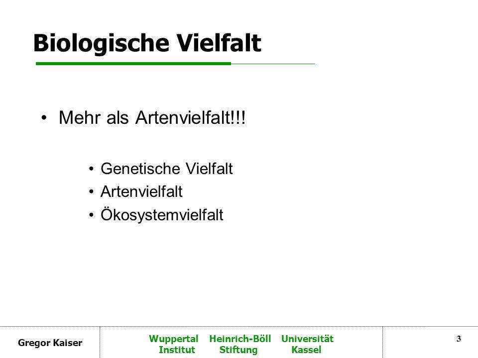 Gregor Kaiser Wuppertal Heinrich-Böll Universität Institut Stiftung Kassel 3 Biologische Vielfalt Mehr als Artenvielfalt!!.