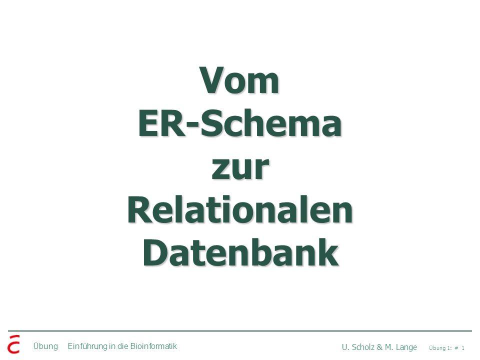 Übung Einführung in die Bioinformatik U. Scholz & M. Lange Übung 1: # 1 Vom ER-Schema zur Relationalen Datenbank