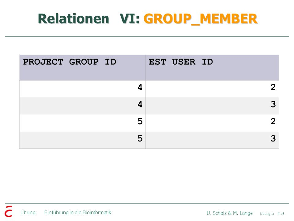 Übung: Einführung in die Bioinformatik U. Scholz & M. Lange Übung 1: # 16 Relationen VI: GROUP_MEMBER PROJECT GROUP IDEST USER ID 42 43 52 53