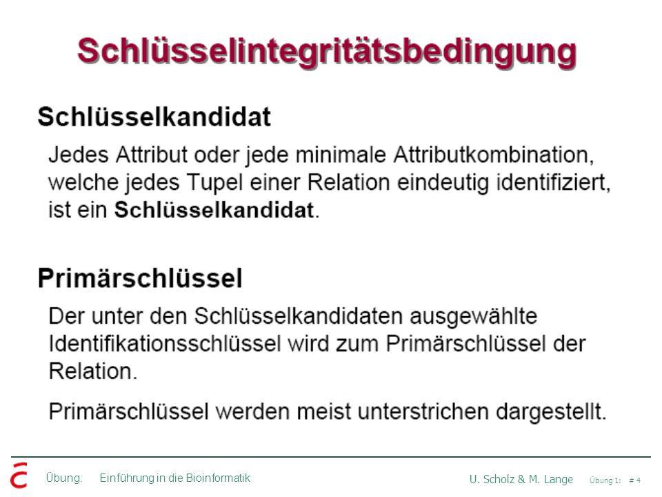 Übung: Einführung in die Bioinformatik U. Scholz & M. Lange Übung 1: # 4