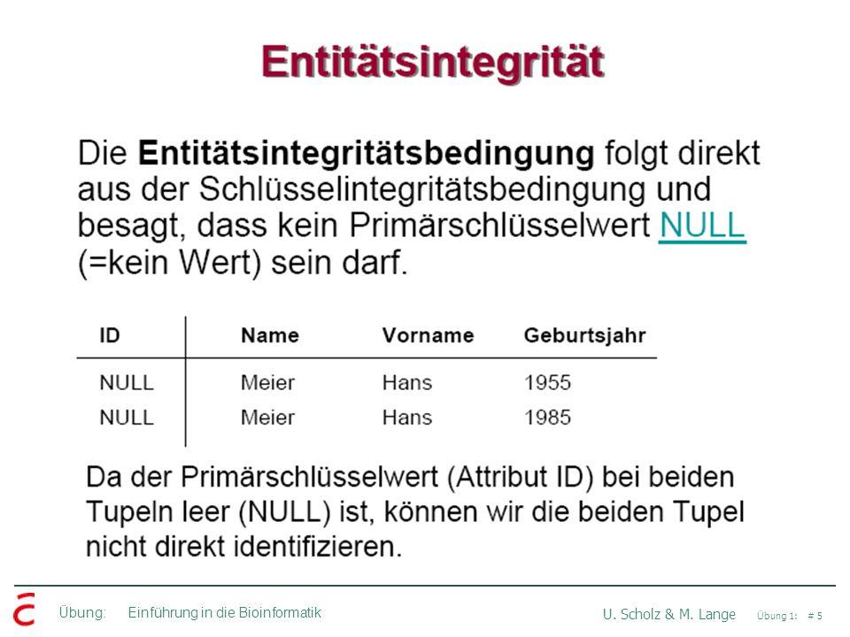 Übung: Einführung in die Bioinformatik U. Scholz & M. Lange Übung 1: # 5