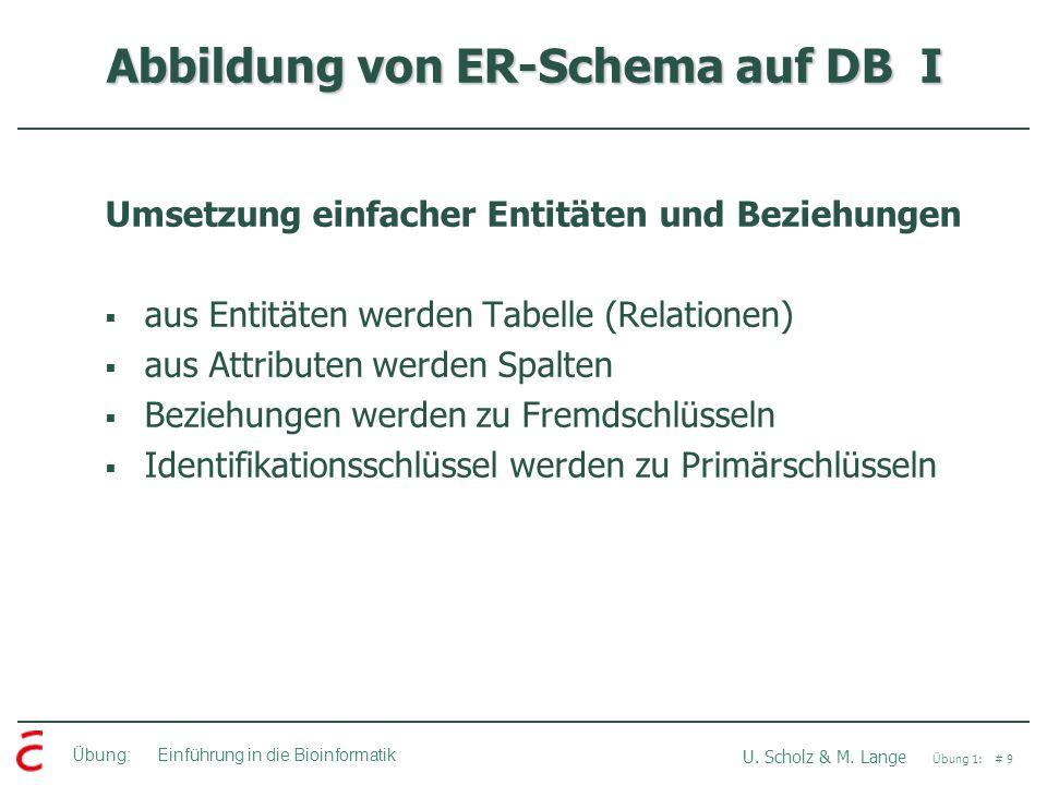 Übung: Einführung in die Bioinformatik U. Scholz & M. Lange Übung 1: # 9 Abbildung von ER-Schema auf DB I Umsetzung einfacher Entitäten und Beziehunge
