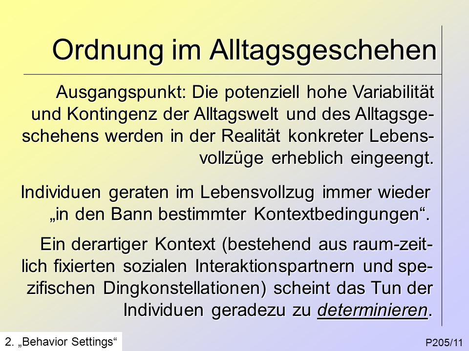 Ordnung im Alltagsgeschehen P205/11 2.
