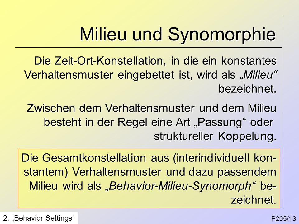 Milieu und Synomorphie P205/13 2.