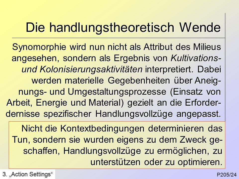 Die handlungstheoretisch Wende P205/24 3.