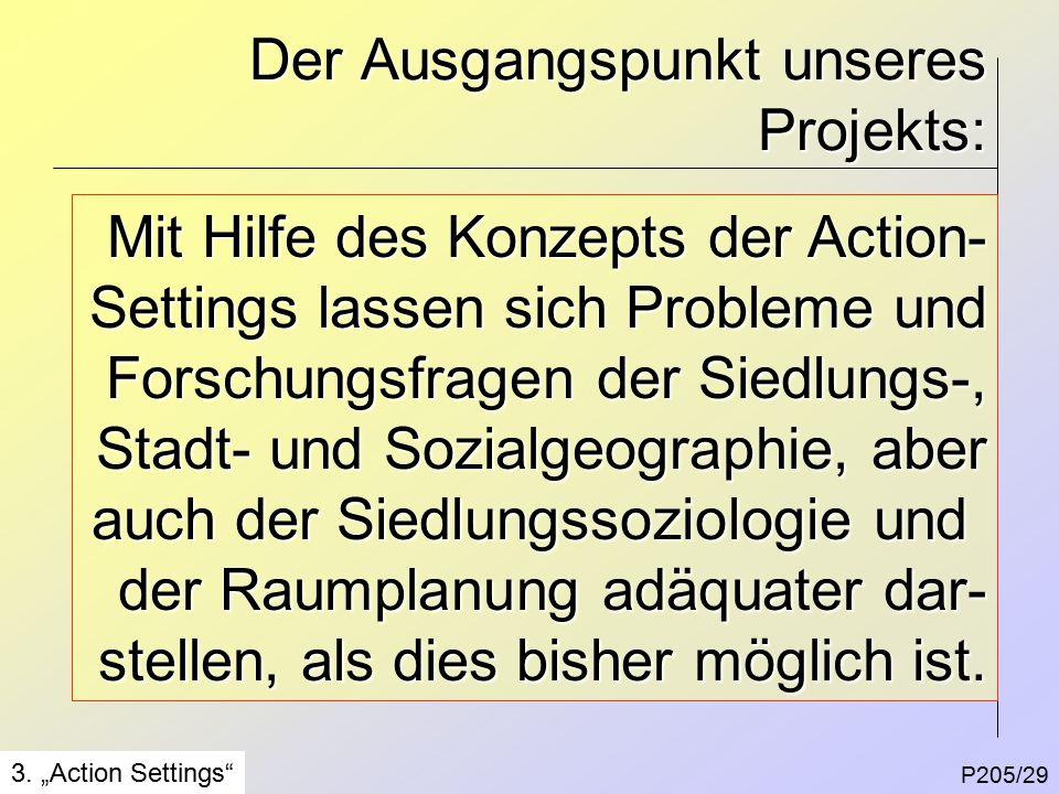 Der Ausgangspunkt unseres Projekts: P205/29 3.
