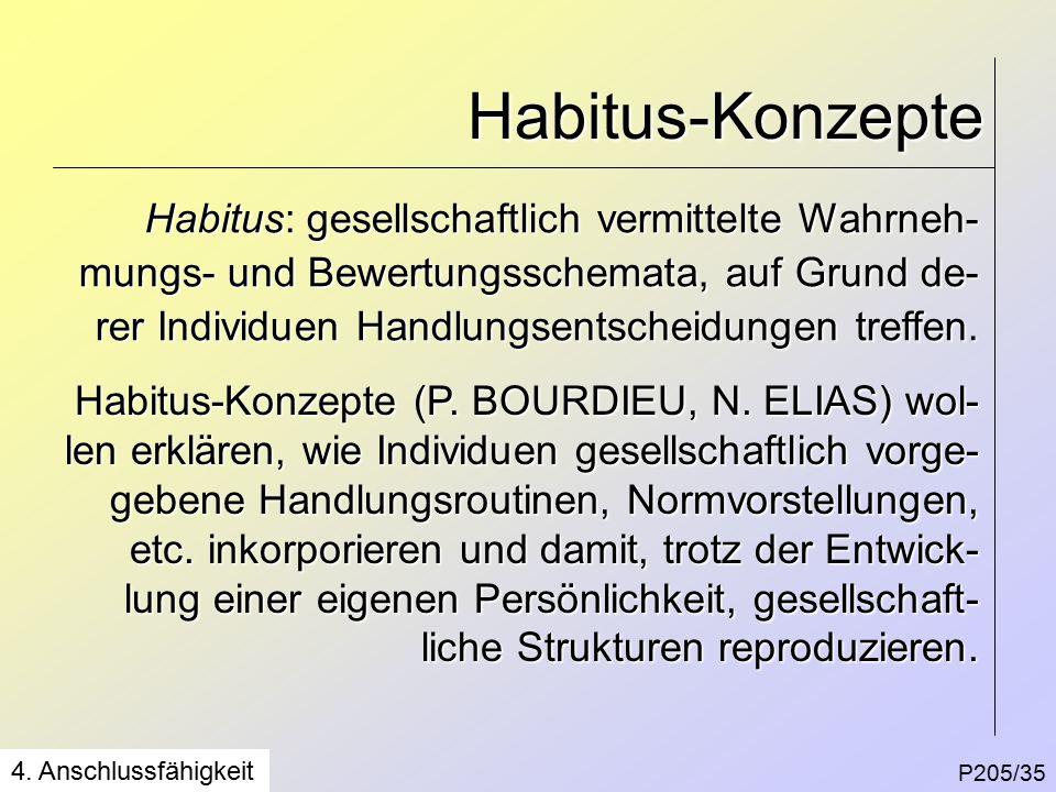 Habitus-Konzepte P205/35 4. Anschlussfähigkeit Habitus-Konzepte (P.