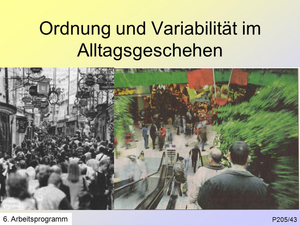 Ordnung und Variabilität im Alltagsgeschehen P205/43 6. Arbeitsprogramm