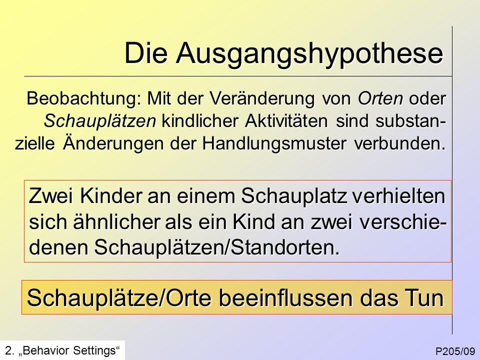 Die Ausgangshypothese P205/09 2.