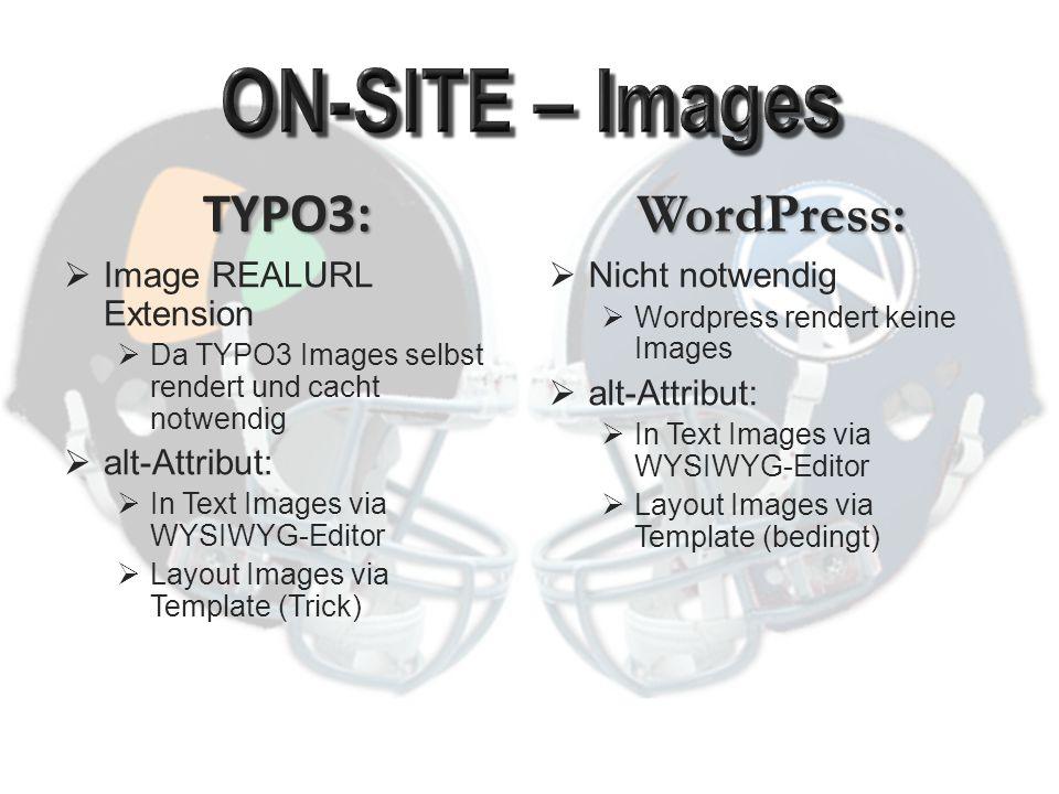 """TYPO3:  rel=""""nofollow nicht unterstützt   title von WYSIWYG Editor und für Menü- Generierung unterstützt WordPress:  rel=""""nofollow unterstützt  title von WYSIWYG Editor unterstützt, für Menüs ggf."""