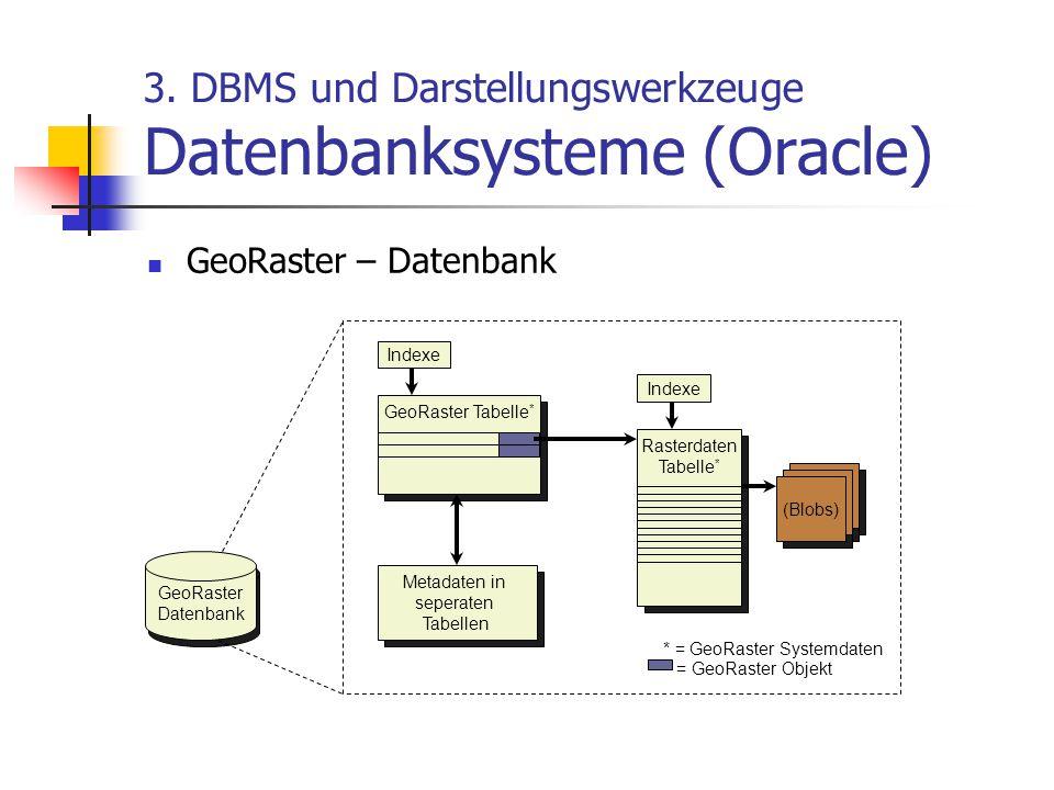 3. DBMS und Darstellungswerkzeuge Datenbanksysteme (Oracle) GeoRaster – Datenbank GeoRaster Datenbank GeoRaster Tabelle * Metadaten in seperaten Tabel