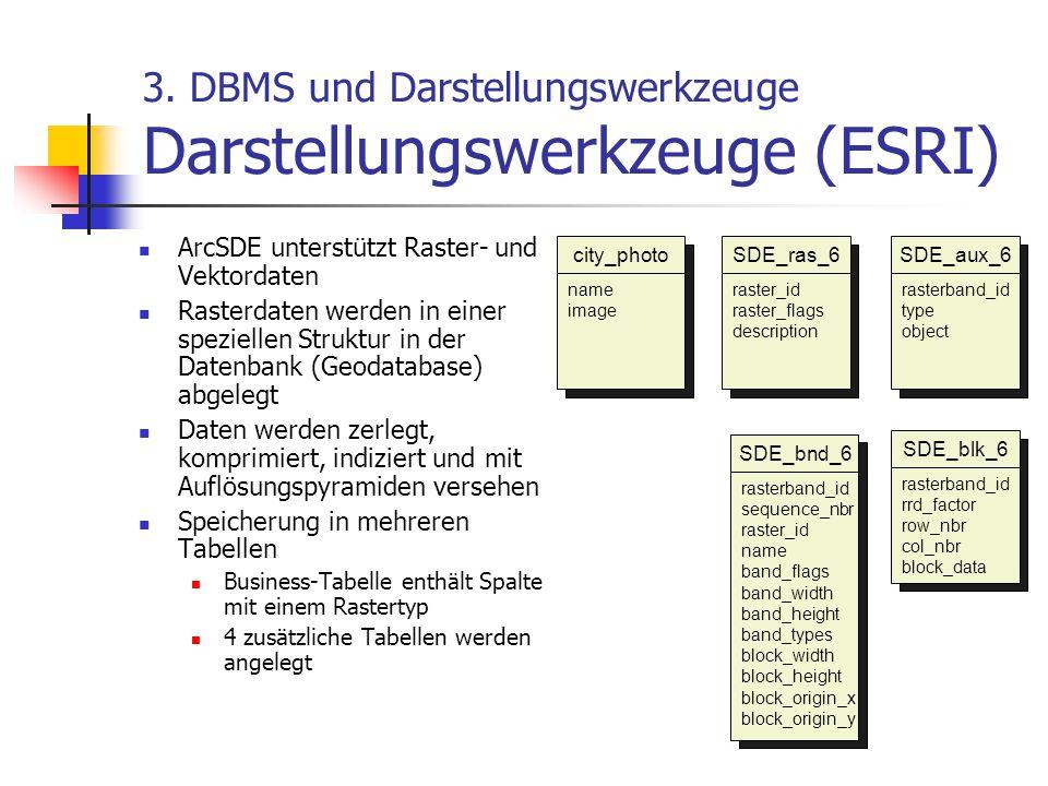 3. DBMS und Darstellungswerkzeuge Darstellungswerkzeuge (ESRI) ArcSDE unterstützt Raster- und Vektordaten Rasterdaten werden in einer speziellen Struk