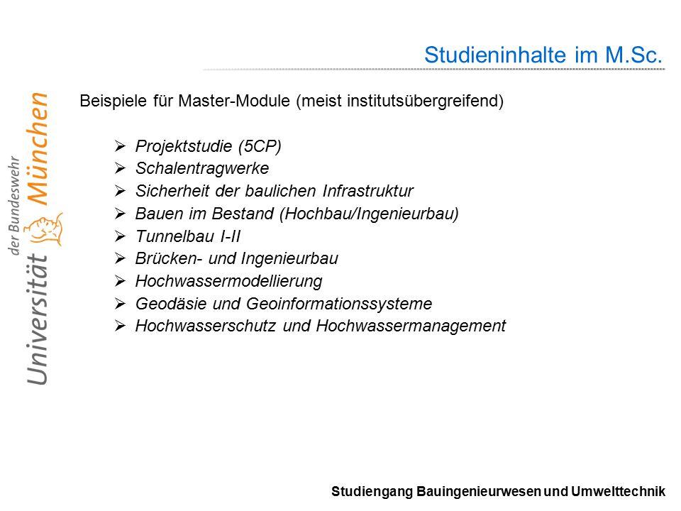 Studiengang Bauingenieurwesen und Umwelttechnik Studieninhalte im M.Sc.