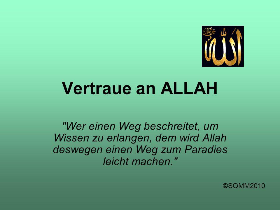 Vertraue an ALLAH