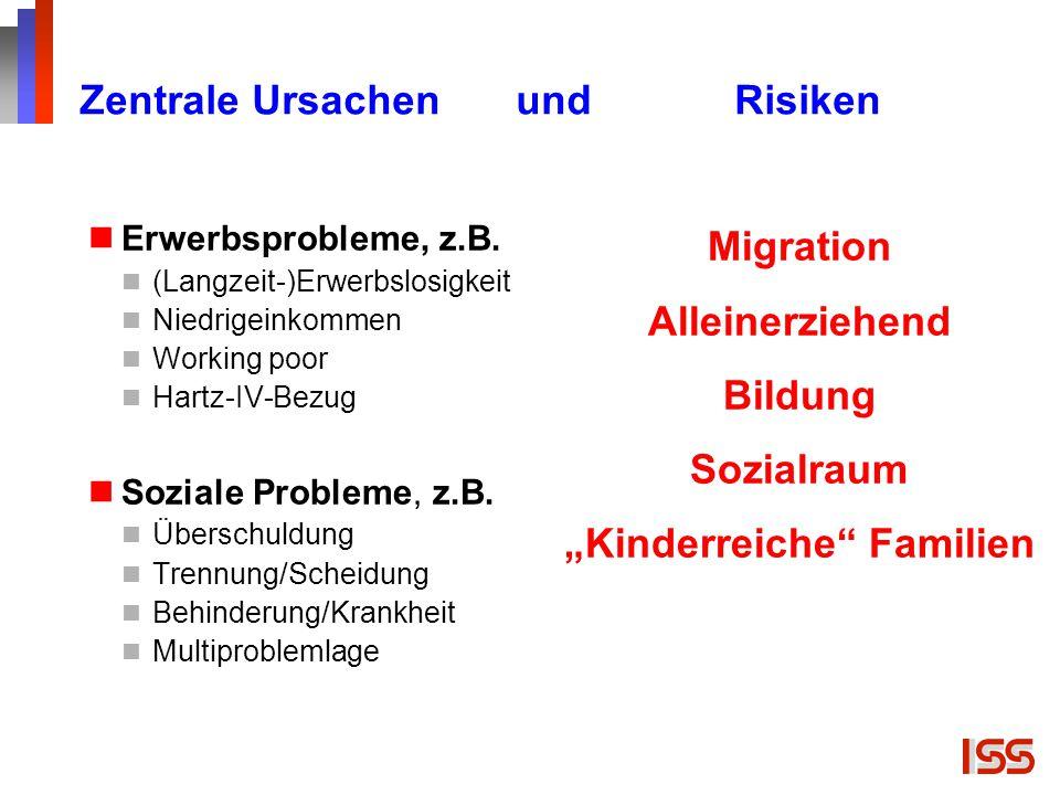 Zentrale Ursachen und Risiken Erwerbsprobleme, z.B. (Langzeit-)Erwerbslosigkeit Niedrigeinkommen Working poor Hartz-IV-Bezug Soziale Probleme, z.B. Üb