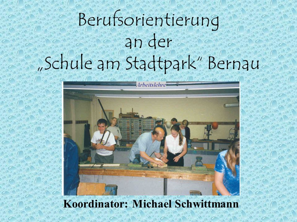 "Berufsorientierung an der ""Schule am Stadtpark"" Bernau Koordinator: Michael Schwittmann"