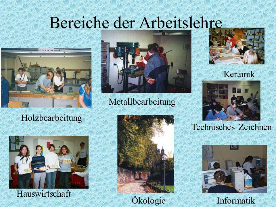 Bereiche der Arbeitslehre Informatik Holzbearbeitung Metallbearbeitung Hauswirtschaft Technisches Zeichnen Keramik Ökologie