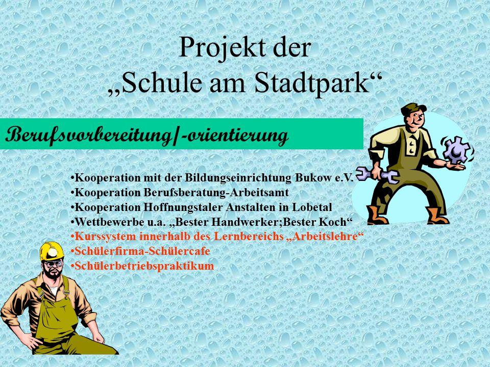"""Projekt der """"Schule am Stadtpark"""" Berufsvorbereitung/-orientierung Kooperation mit der Bildungseinrichtung Bukow e.V. Kooperation Berufsberatung-Arbei"""