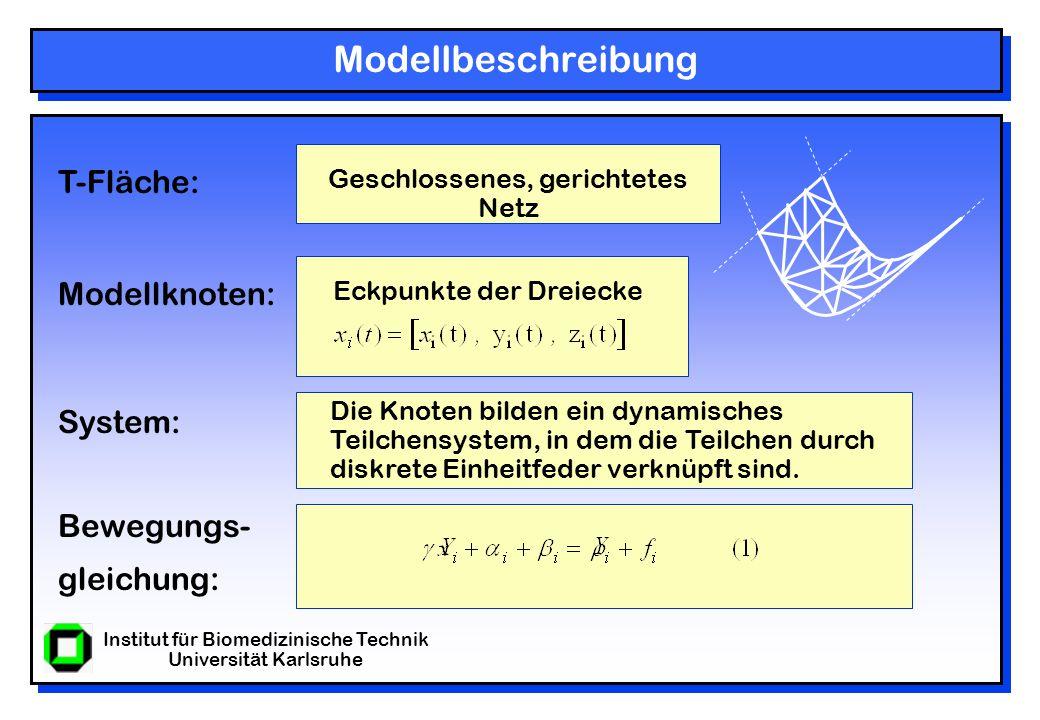 Institut für Biomedizinische Technik Universität Karlsruhe Modellbeschreibung Geschlossenes, gerichtetes Netz Eckpunkte der Dreiecke Die Knoten bilden ein dynamisches Teilchensystem, in dem die Teilchen durch diskrete Einheitfeder verknüpft sind.