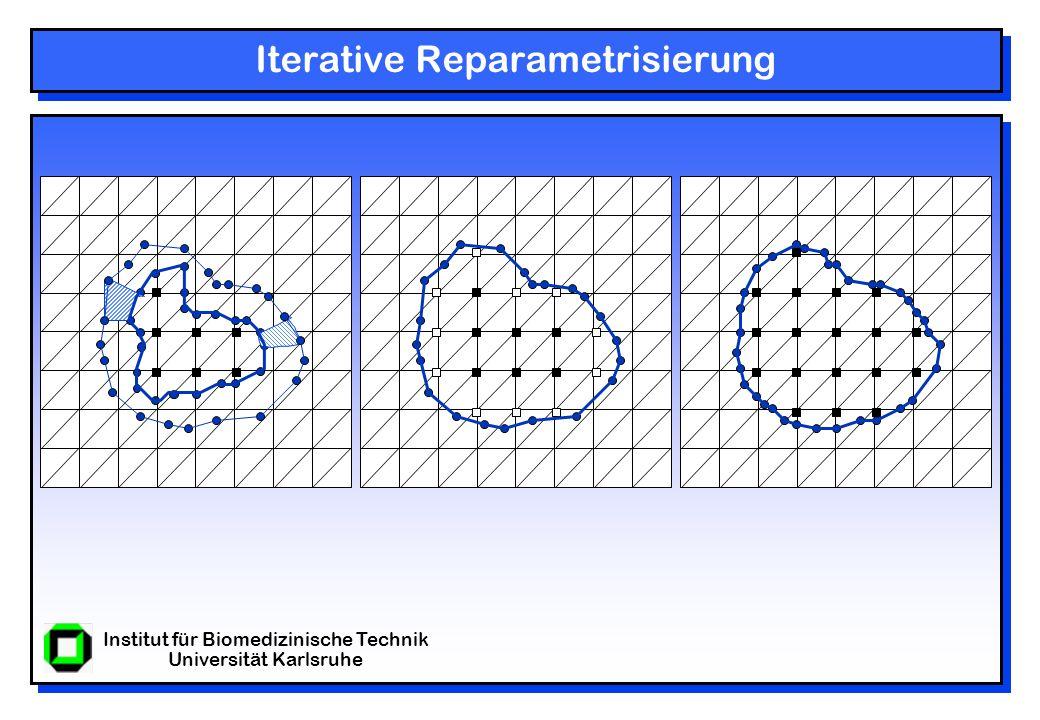 Institut für Biomedizinische Technik Universität Karlsruhe Iterative Reparametrisierung