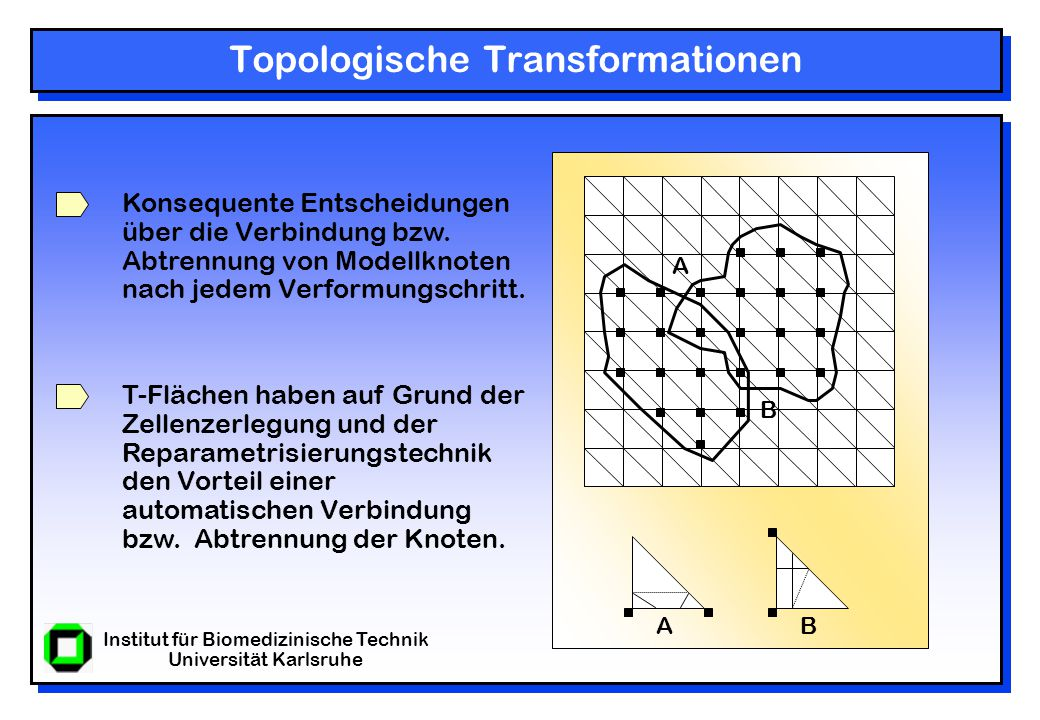 Institut für Biomedizinische Technik Universität Karlsruhe Topologische Transformationen Konsequente Entscheidungen über die Verbindung bzw.