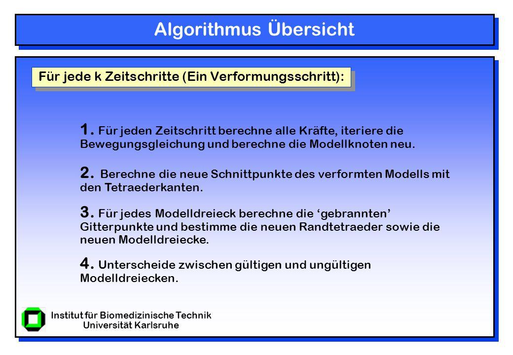 Institut für Biomedizinische Technik Universität Karlsruhe Algorithmus Übersicht Für jede k Zeitschritte (Ein Verformungsschritt): 1.
