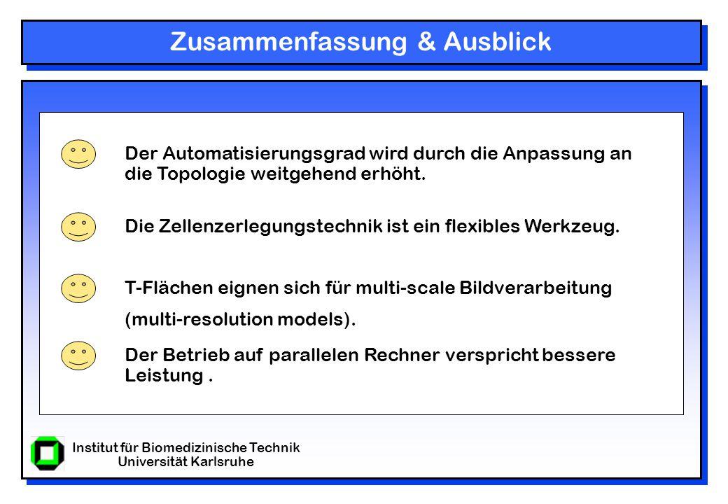 Institut für Biomedizinische Technik Universität Karlsruhe Zusammenfassung & Ausblick Der Automatisierungsgrad wird durch die Anpassung an die Topologie weitgehend erhöht.