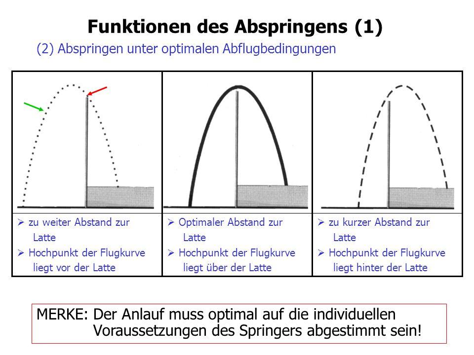 Funktionen des Abspringens (1) (2) Abspringen unter optimalen Abflugbedingungen MERKE: Der Anlauf muss optimal auf die individuellen Voraussetzungen d