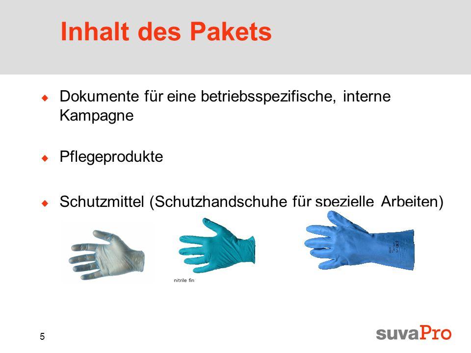 5 Inhalt des Pakets  Dokumente für eine betriebsspezifische, interne Kampagne  Pflegeprodukte  Schutzmittel (Schutzhandschuhe für spezielle Arbeiten)