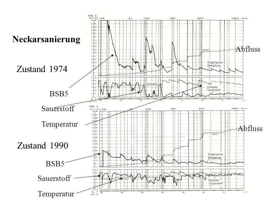 Neckarsanierung Zustand 1974 Zustand 1990 BSB5 Sauerstoff Temperatur BSB5 Sauerstoff Temperatur Abfluss