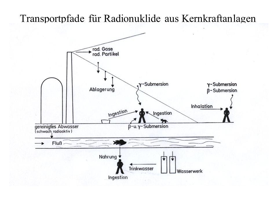 Transportpfade für Radionuklide aus Kernkraftanlagen
