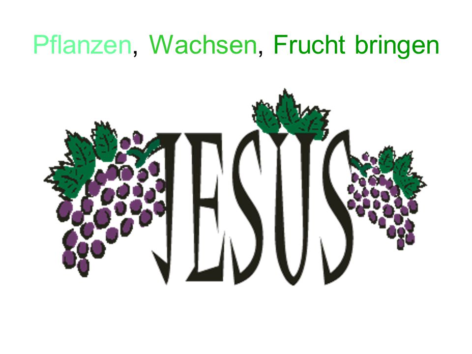 """Erntedank: Wir feiern das """"Frucht bringen der Felder."""